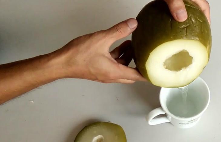 Bài thuốc dân gian trị thoát vị đơn giản với quả đu đủ xanh
