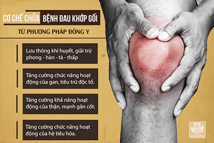 Cơ chế điều trị thoái hóa khớp gối của Đông y