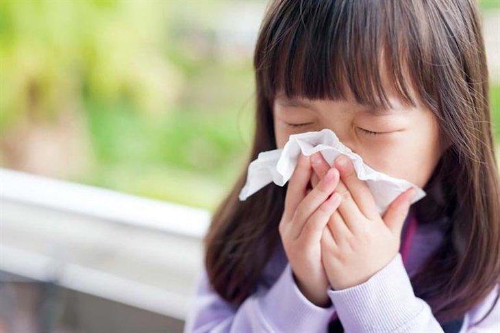 Hắt hơi, ngứa mũi và nghẹt mũi là những triệu chứng cơ bản của bệnh