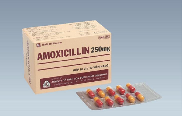 Amoxicillin là thuốc kháng sinh ưu tiên trong điều trị bệnh