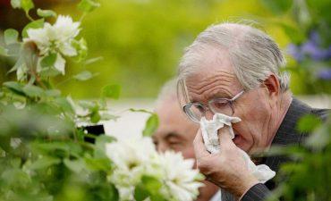 Viêm mũi dị ứng theo mùa là một bệnh lý phổ biến có thể gặp ở mọi đối tượng