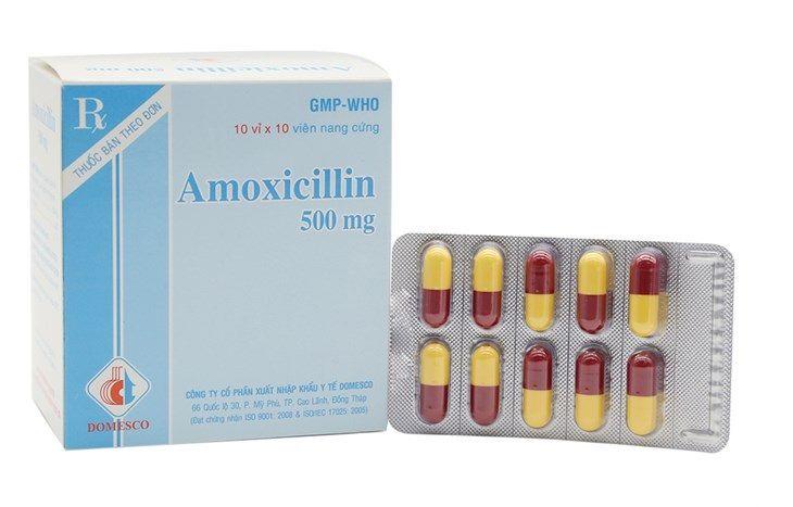 Amoxicillin là loại thuốc được sử dụng phổ biến để giảm nhanh các triệu chứng của bệnh