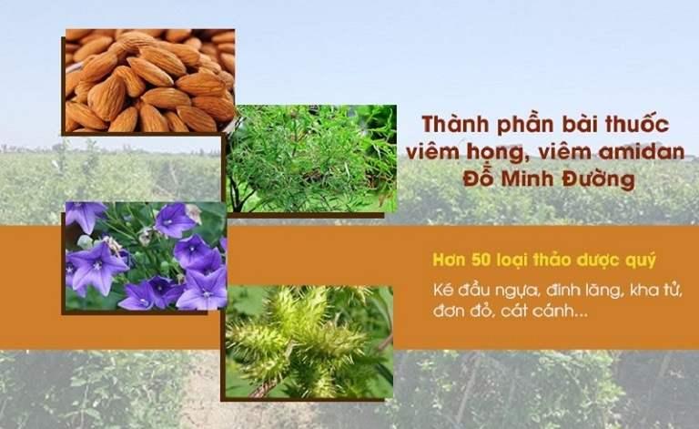 Thảo dược trong bài thuốc viêm amidan Đỗ Minh Đường được thu hái từ vườn dược liệu sạch
